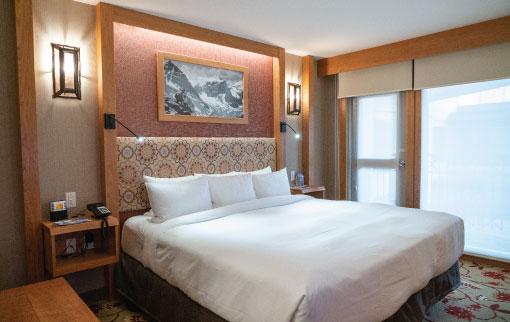 Standard Hotel Room 1 King