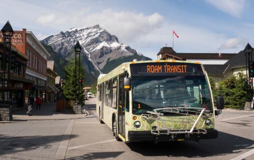 Roam Bus Passes
